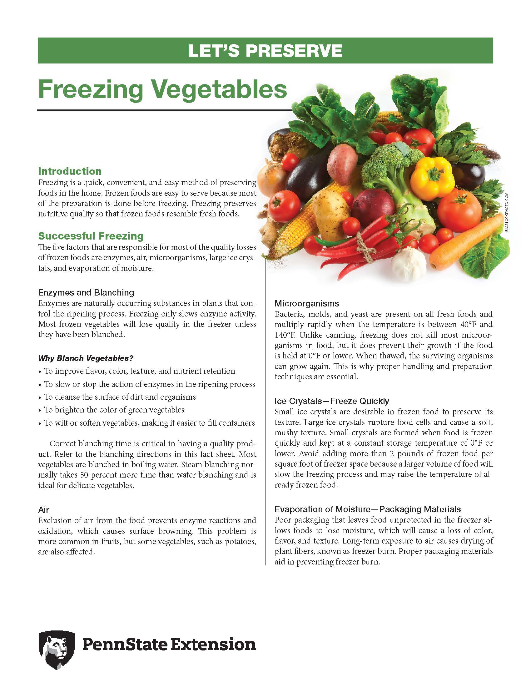 Freezing Vegetables