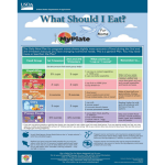 What Should I Eat? MyPlate for Moms Poster